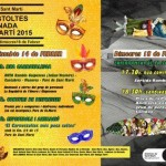 cartell Carnaval 15